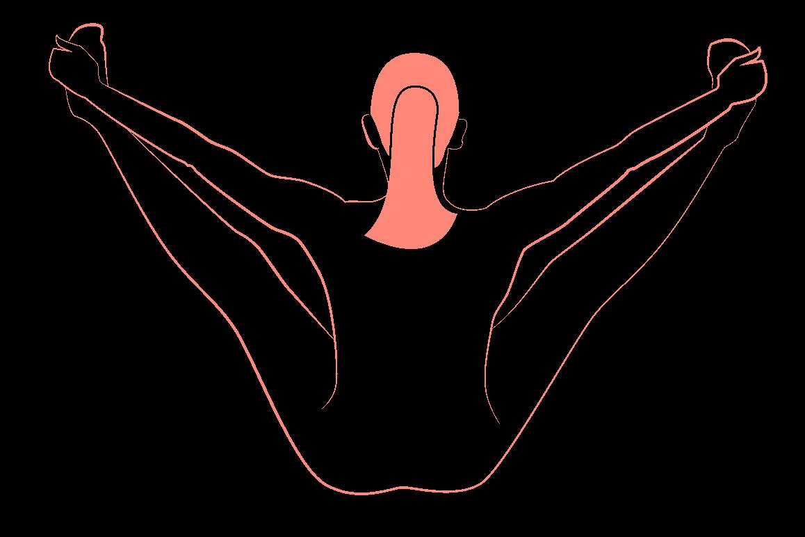 Beckenbodentraining Übung für den Beckenboden