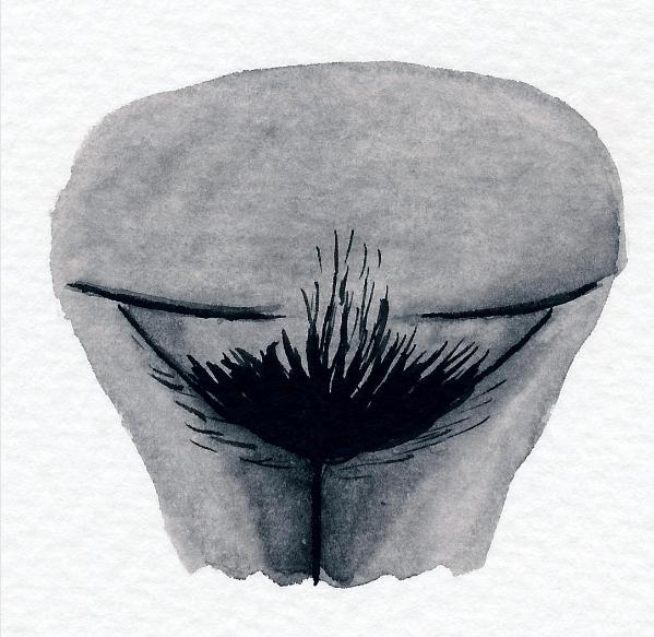 Vulva Shaming - jede Vulva ist schön! Bilder einer Vulva